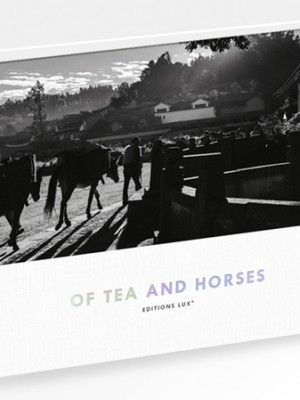 Of Tea and Horses