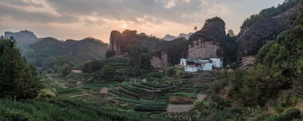 In the core area of Wuyishan, the heartland of oolong tea, in Fujian province